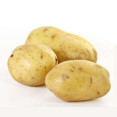 Pomme de terre de consommation filet 2.5kg