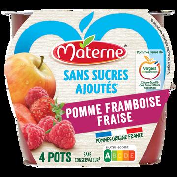 Materne Coupelle Pomme Framboise Fraise S/sucre Ajouté Materne 4x100g