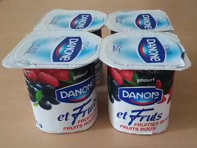 Yaourts fruits des bois, DANONE, 4x125g