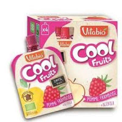 Compote COOL Fruits pomme framboise acérola bio Viatbio 4 gourdes 90g