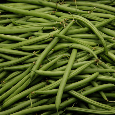 Haricot vert, Calibre 60/40; Maroc, 500g