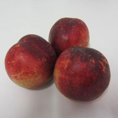 Nectarine blanche - France - Cat 1 - Cal A -