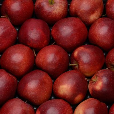 Pomme braeburn, calibre 136/180, catégorie 1, Alsace