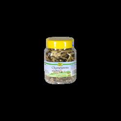 Cèpes extra sèches ROGER DUTRUY, pot de 100g