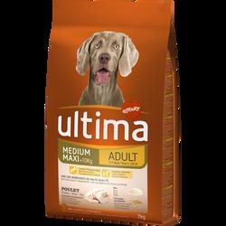Aliment pour chien ULTIMA medium maxi adult au poulet, paquet de 7kg