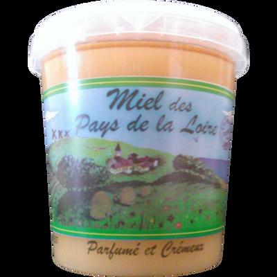 Miel mille fleurs des Pays de la Loire MELLI OUEST, pot de 1kg