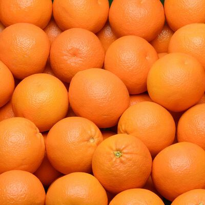 Orange à jus Valencia Late, U, calibre 6/7, Catégorie 1, Espagne, Girsac 2kg