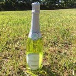 Vin champagnisé à la verveine Saint Alyre élaboré par EMB21464E FRANCE pour Saint Verny Vignobles a F36960 Veyre monton 750ml