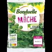 Bonduelle Mâche Sans Résidu De Pesticides, Bonduelle, Sachet, 100g