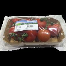 Tomate ronde en grappe, segment Les grappes, BIO, catégorie 2, Espagne, barquette, 500g