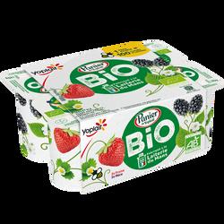 Yrt bio sucrés aux fruits rges fraise/mûre PAN.YOPLAIT x6
