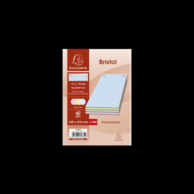 Fiche perforée Bristol EXACOMPTA, 14,8x21cm, 100 unités, coloris assortis