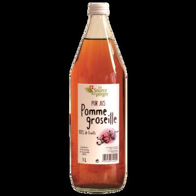 Jus de pomme groseille LA SOURCE DU VERGER, bouteille 1l