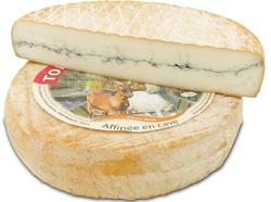 TOMME DE CHEVRE A LA CENDRE,au lait de chèvre pasteurisé, 26,1%MG,