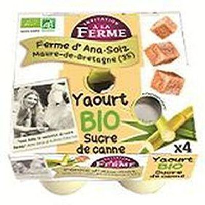 Yaourt bio au sucre de canne Ana Soiz 4x125g