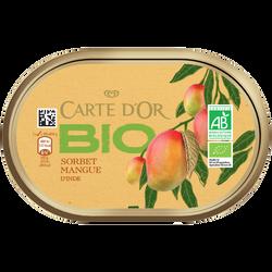 Crème glacé mangue bio CARTE D'OR, 300g