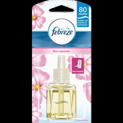 Recharge pour désodorisant électrique  parfum fleur naissante FEBREZE