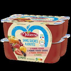 Dessert fruits sans sucre ajouté fruits rouges les inédits MATERNE, 12x100g