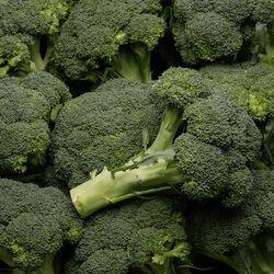 Chou brocoli, Alsace