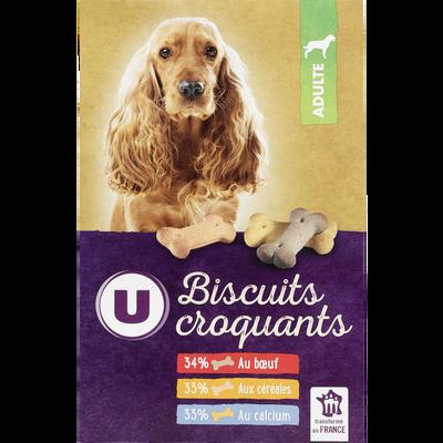 Biscuits croquants pour chien b uf céréales et calcium U, boîte de 500g