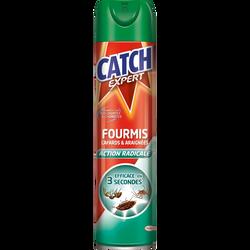 Insecticide fourmis, cafards et araignées CATCH, aérosol 400ml