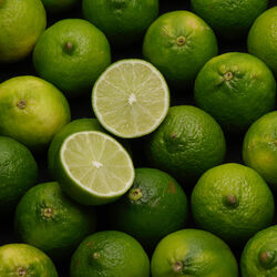 Citron vert bateau vrac