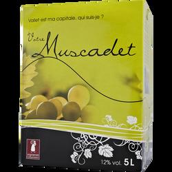 """Vin blanc AOC Muscadet  """"Eux 4"""", fontaine à vin de 5l"""