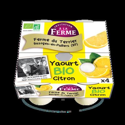 4 yaourts nature Ana Soiz
