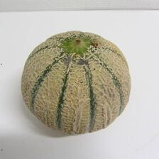 Melon BIO pièce - France -Cat 2 - Cal 650/800g -