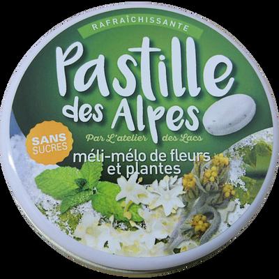PASTILLES DES ALPES méli-mélo fleurs et plantes sans sucre avec édulcorants, boite métallique de 35g