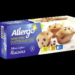 Mini cakes au raisin sans gluten et lactose ALLERGO, x6 soit 240g
