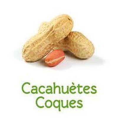 Cacahuètes coques bio vrac