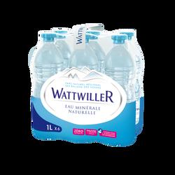 Eau minérale naturelle WATTWILLER, 6 bouteilles de 1l