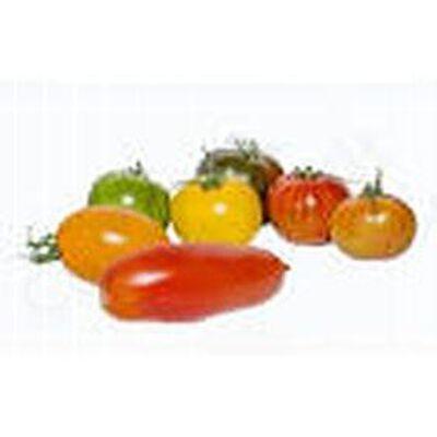 tomate d antan