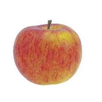 POMME PIROUETTE