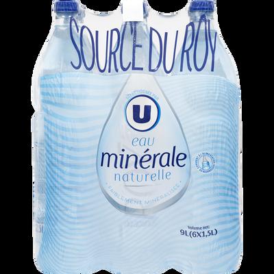 Eau minérale naturelle Source du Roy U, 6 bouteilles de 1,5l