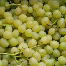 Raisin blanc Italia, Catégorie 1, Sicile
