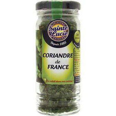 Coriandre de France Feuilles