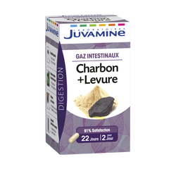 Digestion gaz intestinaux charbon, levure JUVAMINE, 22 gélules