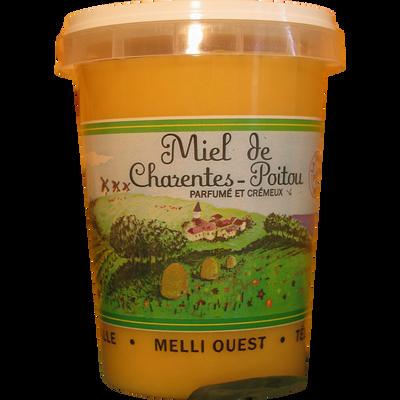 Miel mille fleurs Poitou Charentes MELLI-OUEST, pot de 500g