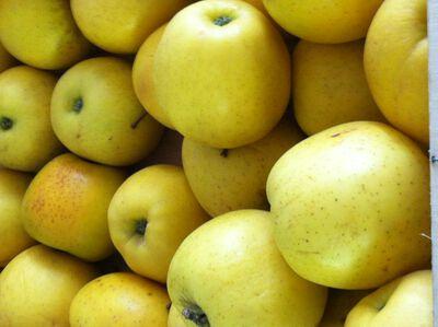 Pommes golden barquette 4 pièces
