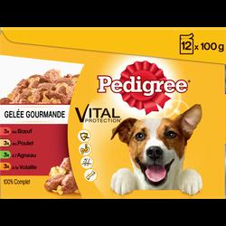 Sachets fraîcheur pour chien 4 variétés en gelée gourmande PEDIGREE, 12x100g
