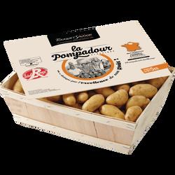 Pomme de terre Pompadour, de consommation à chair ferme, LABEL ROUGE,30/45MM, Cat.1, France.