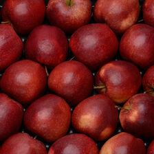 Pomme Golden Delicious, BIO, calibre 136/180, catégorie 2, France, barquette 4 fruits