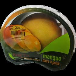Mangue kent, calibre 9, Pérou, barquette 1 fruit