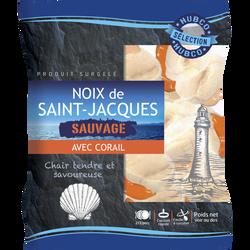 Noix de Saint-Jacques avec corail 20/40Lbs GROENLAND, 300g