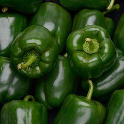 Poivron vert clovis, calibre 60/80, catégorie 1, France