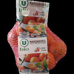 Mandarine Clemenvilla, U BIO, calibre 1X-XX, catégorie 2, Espagne, girsac 1kg