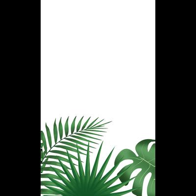 Nappe, pliée, effet satin, 1,4x2,2m, tropikata green, réutilisable