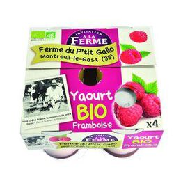 Y. VACHE BIO FRAMBOISE 4X125G